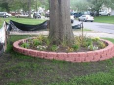 Best and beautiful tree ring planter ideas 43