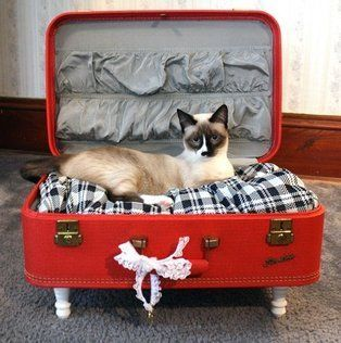 Admirable diy pet bed 02
