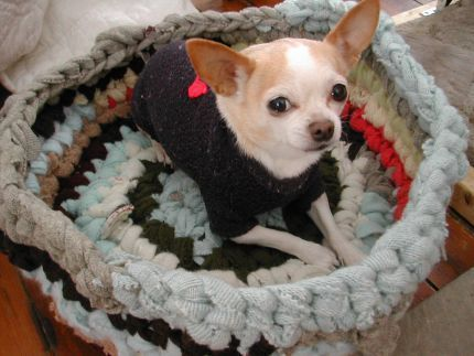 Admirable diy pet bed 08