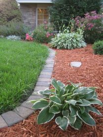 Awesome ways to creatively edge your garden 05