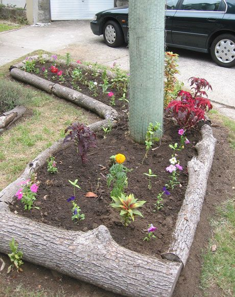 Awesome ways to creatively edge your garden 48