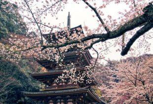 Stunning breathtaking temples around the world 21