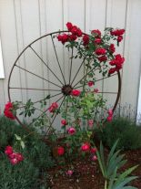 Amazing rustic garden decor ideas 30