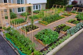 Elegant raised garden design ideas to inspire you 08