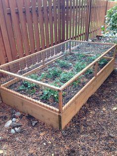 Elegant raised garden design ideas to inspire you 16
