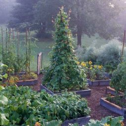 Elegant raised garden design ideas to inspire you 32