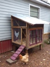 Extraordinary chicken coop decor ideas 13
