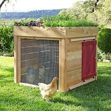 Extraordinary chicken coop decor ideas 17