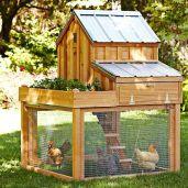 Extraordinary chicken coop decor ideas 24