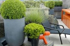 Modern urban gardening ideas 27