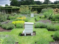 Stunning bee friendly garden designs for more productive gardens 19