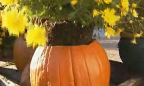 Pretty fall planters for easy outdoor fall decorations 03