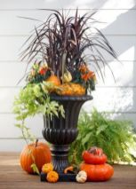 Pretty fall planters for easy outdoor fall decorations 27