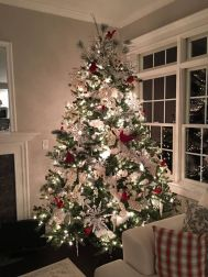 Fascinating christmas tree ideas for living room 19