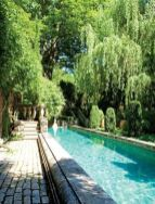 Minimalist small pool design with beautiful garden inside 22