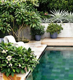 Minimalist small pool design with beautiful garden inside 36