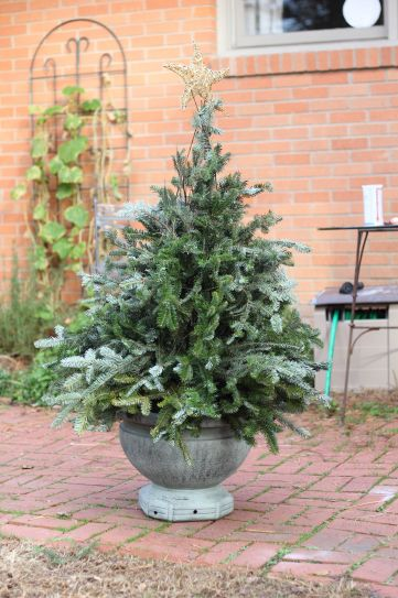 Perfect diy front porch christmas tree ideas on a budget 15