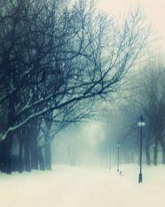 Wonderful winter wonderland decoration ideas 25