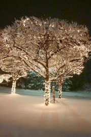 Wonderful winter wonderland decoration ideas 28