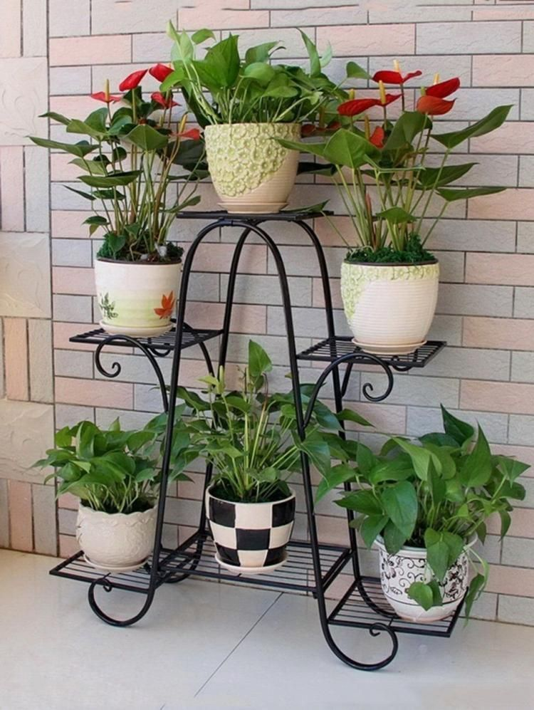 Cozy house plants decoration ideas for indoor 13