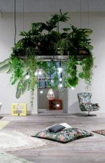 Cozy house plants decoration ideas for indoor 35