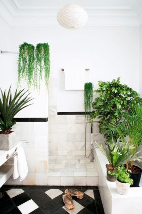 Cozy house plants decoration ideas for indoor 48