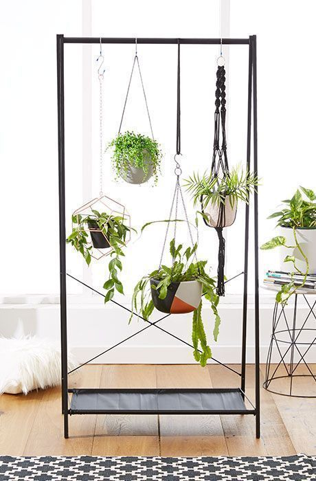 Cozy house plants decoration ideas for indoor 49