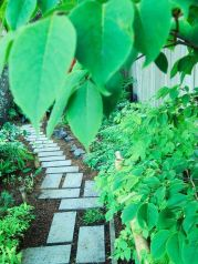 Elegant backyard landscaping ideas using bricks 33
