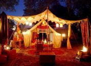 Best ideas to free praise in nature camping 22