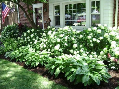 Charming flower beds ideas for shady yards 08