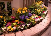Charming flower beds ideas for shady yards 33