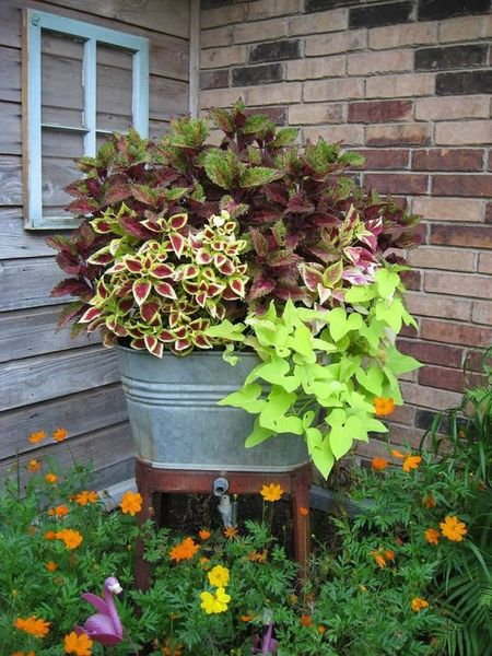 Charming flower beds ideas for shady yards 39