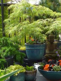 Outstanding japanese garden designs ideas for small space 30