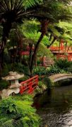 Outstanding japanese garden designs ideas for small space 49
