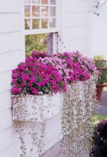 Attractive window box planter ideas to beautify up your home 18