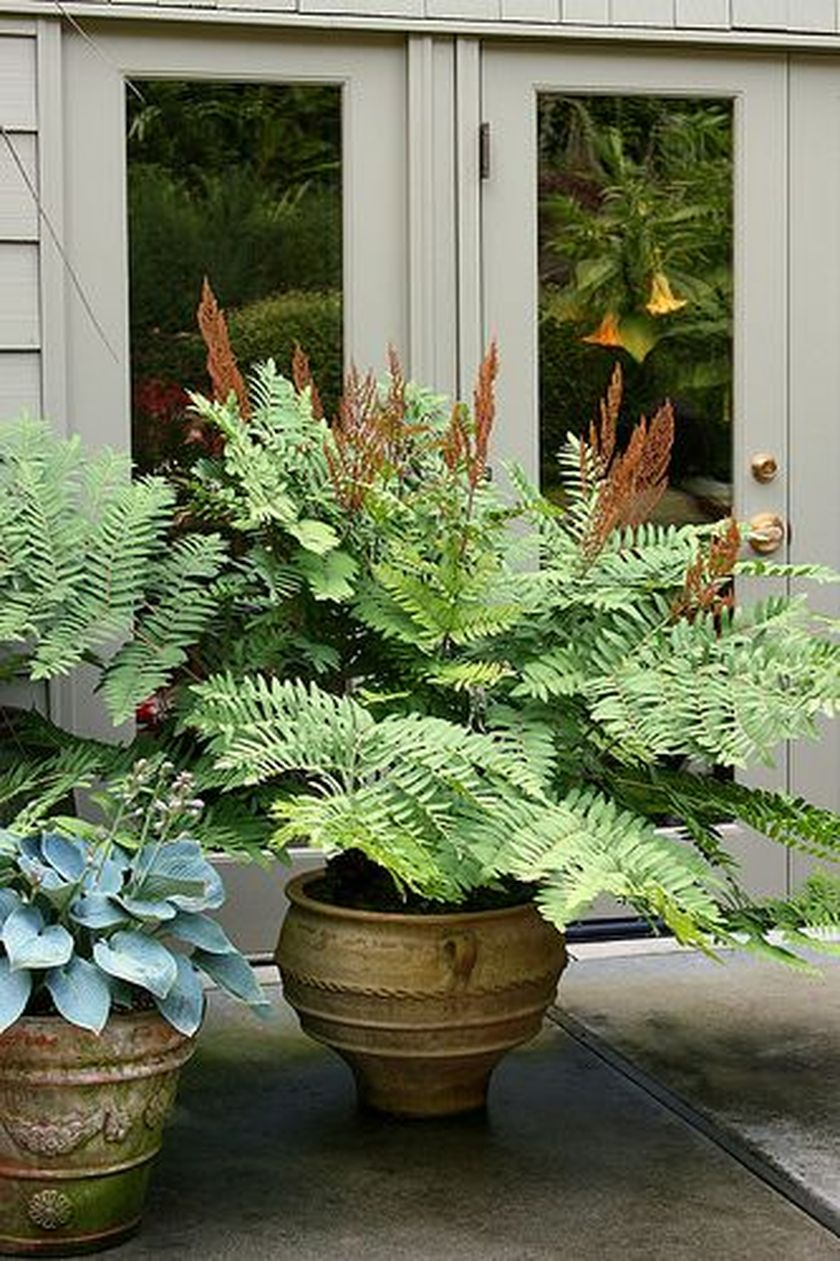 Attractive window box planter ideas to beautify up your home 26