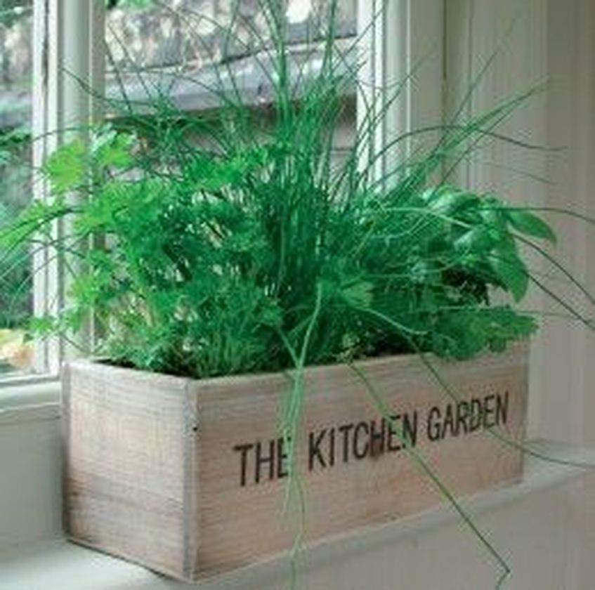 Attractive window box planter ideas to beautify up your home 27