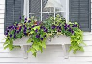 Attractive window box planter ideas to beautify up your home 47