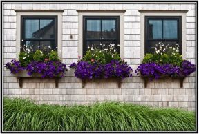 Attractive window box planter ideas to beautify up your home 51