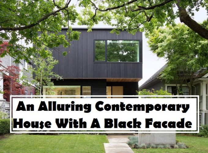 An alluring contemporary house with a black facade