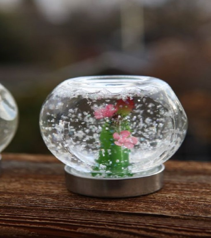 Succulent snow globe Timeless Charming Christmas Snow Globe Ideas That Everyone Will Adore