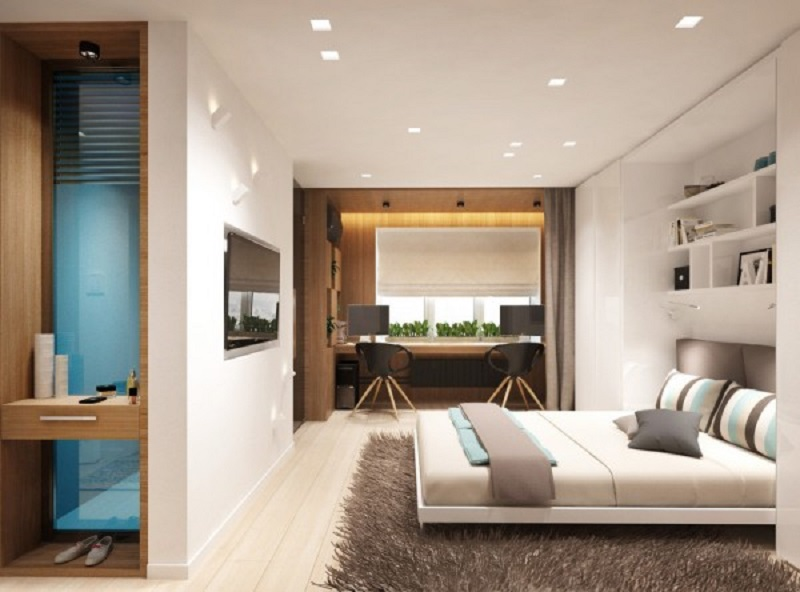 Studio apartment design for a young couple with a variety of activities within a single room 1