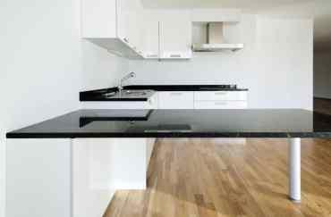 Apartment-black-and-white-kitchen-4