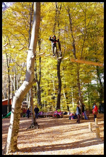 Râșnov - my first ropes course!