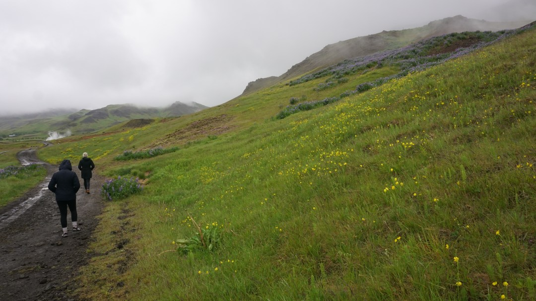 Iceland Road Trip Round Trip Travel Hike Nature