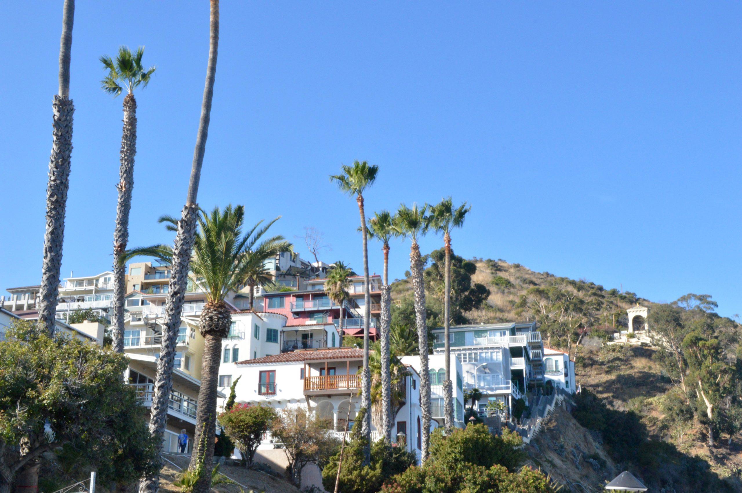 Catalina Island Los Angeles Houses