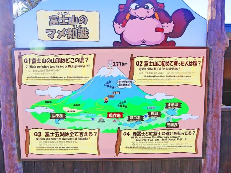 狸貓 | 富士山的介紹 | 天上山公園 | 山梨 | 巡日旅行攝