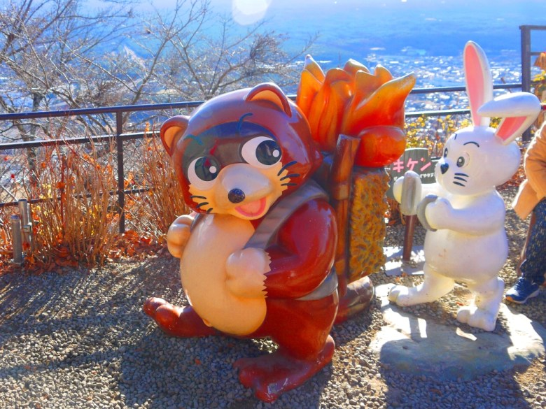 Tanuki | Usagi | 狸子 | 兔子 | 天上山公園 | 日本 | 巡日旅行攝