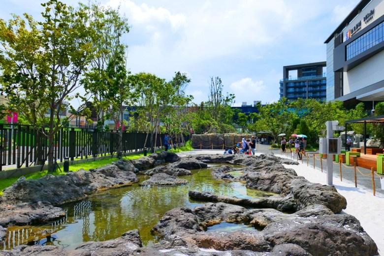 漫步叢林 Jungle Walk | 戶外 | Zone 4 | Taiwan | RoundtripJp