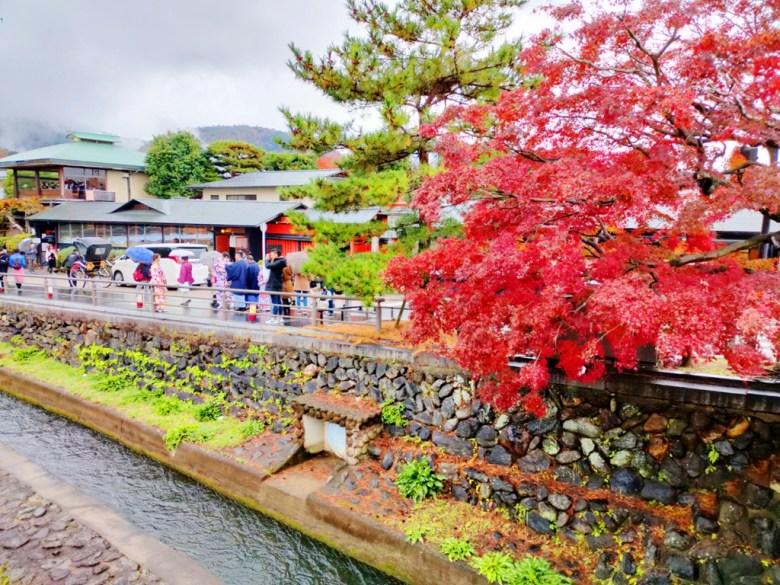 Maple | とげつきょう | 渡月橋 | 桂川 | Kyoto | Kansai | Japan | RoundtripJp